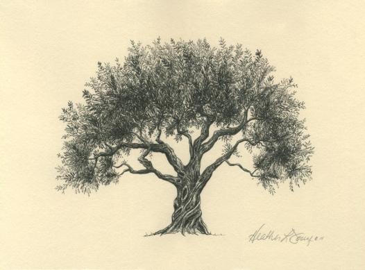 e-olive-tree-natural